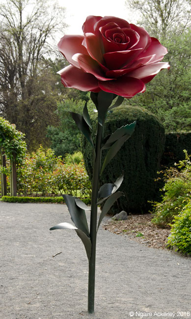 Rose sculpture, Botanic Gardens