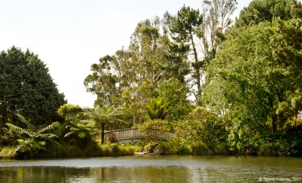 Auckland Botanic Gardens Lake
