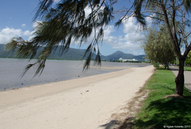 Cairns Esplanade, great for a hot walk