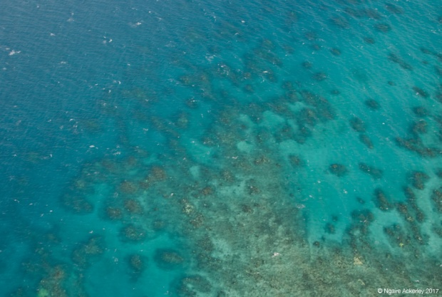 Flying over Great Barrier Reef