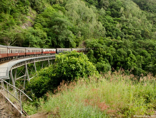 Kuranda Scenic Rail - train from Cairns to Kuranda