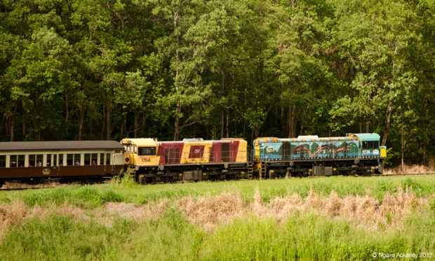 Kuranda Scenic Rail Train