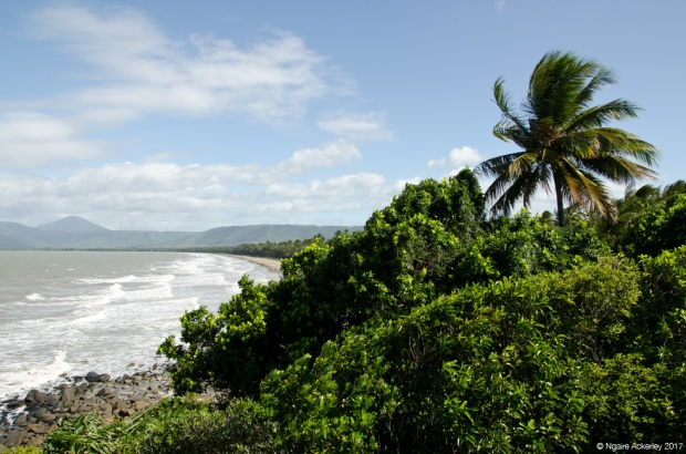 View over Port Douglas Beach