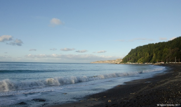 Cape Kidnappers - beaches
