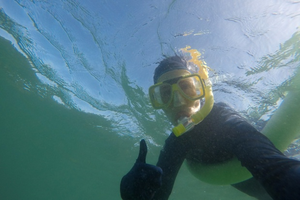 Snorkelling in the Low Isles