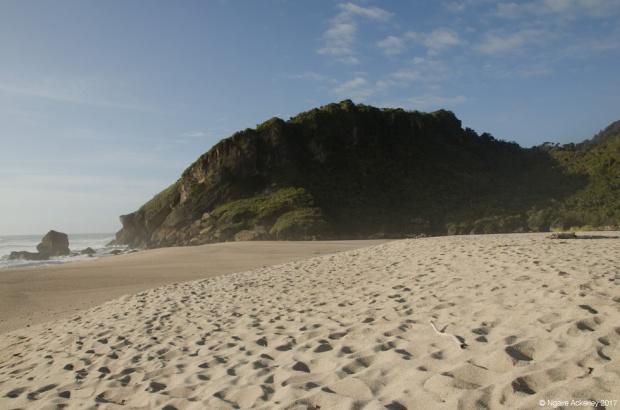 Kahurangi beach
