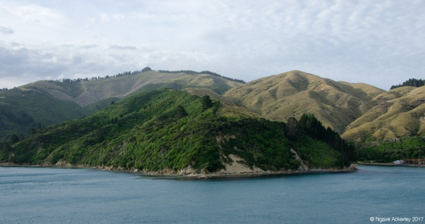 Marlborough Sounds - on the interislander ferry