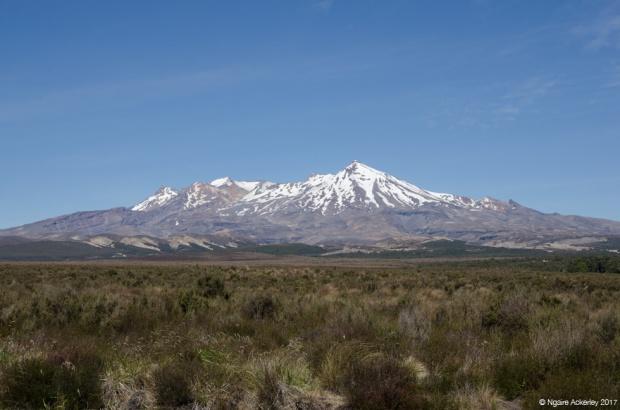 Mt Ruapehu, Desert Road
