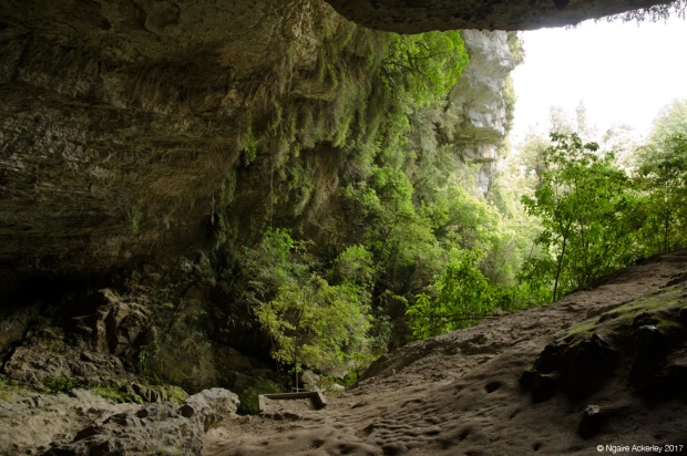 Looking out the Oparara Arches
