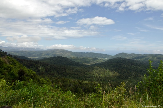 View over the valleys leading to Karamea