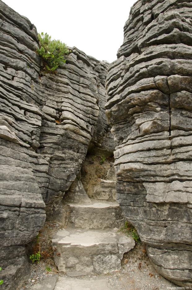 Stepping through the Pancake Rocks