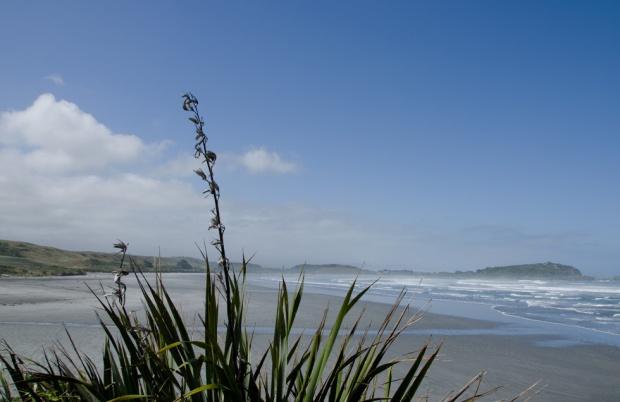 Tauranga Bay beach