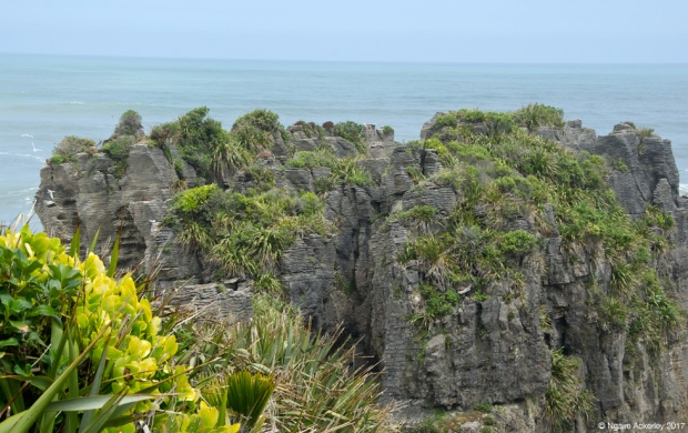 Punakaiki, Pancake Rocks, New Zealand