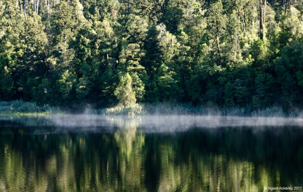 Lake Matheson - Smoke on the water