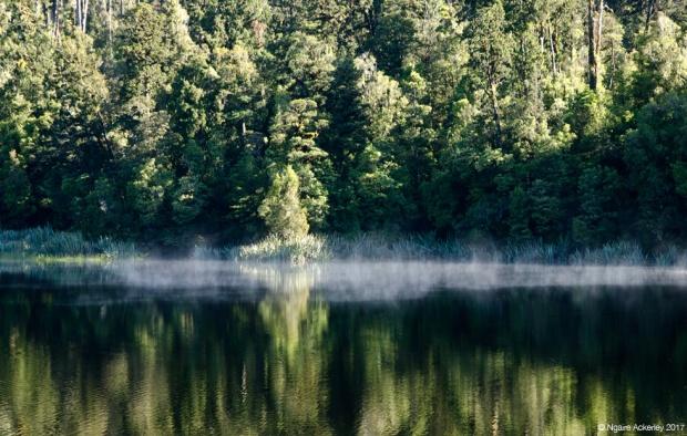 Lake Matheson - Smoke on the water