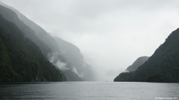 Doubtful Sound Fiord, New Zealand