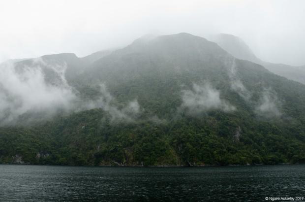 Doubtful Sound, Fiordland, New Zealand