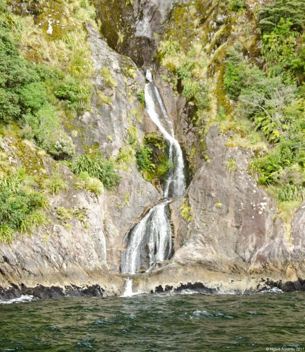 Waterfalls in Doubtful Sound
