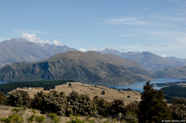 View of Lake Hawea walking up Mount Iron