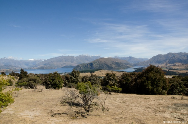 View at top of Mount Iron, Wanaka