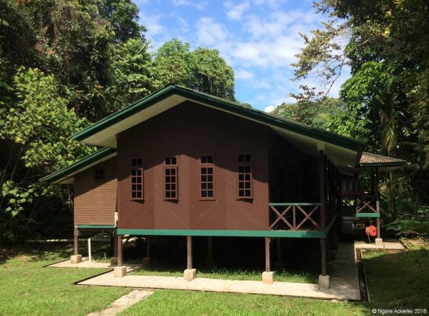 Longhouse accomodation at Mulu National Park