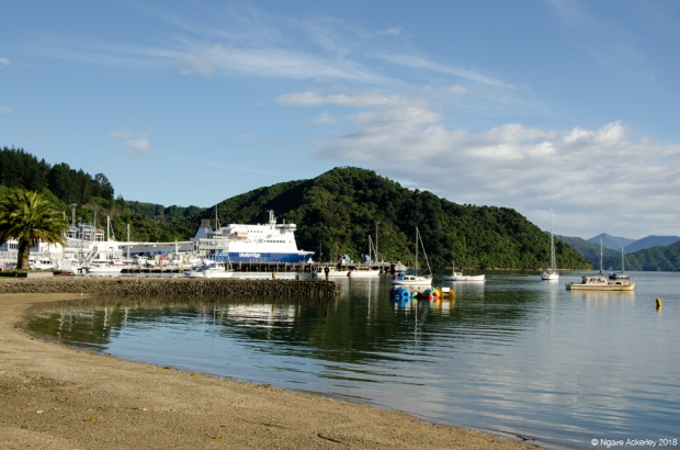 Picton harbour