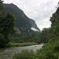 Borneo cave exploration and leech strewn forest