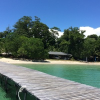 Survivor Island, Borneo