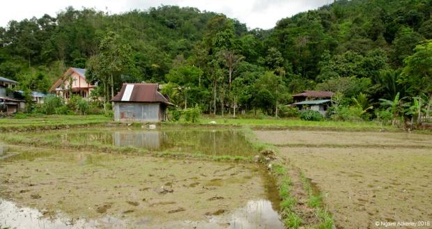 Tambatuon village