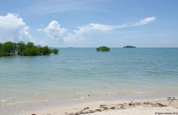 Pulau Libaran, Turtle Island