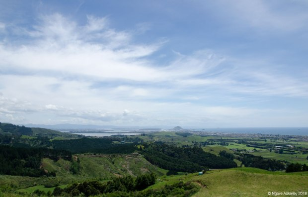 Papamoa Hills view