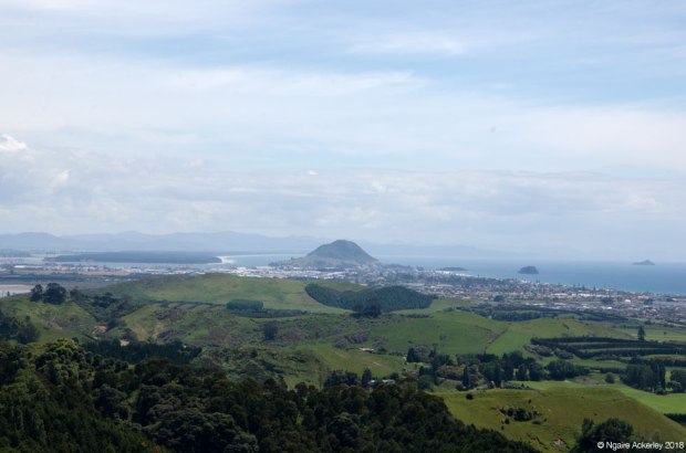 Mount Maunganui, from Papamoa Hills
