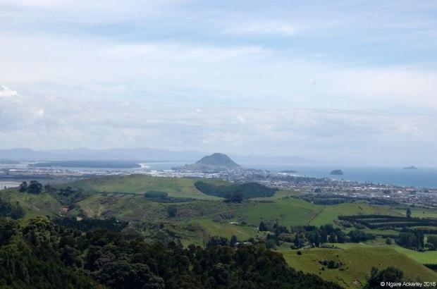 Mount Maunganui, from Papamoa Hills