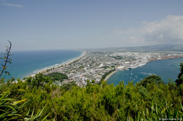 View from top of Mount Maunganui