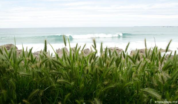 Waves crashing, Mt. Maunganui